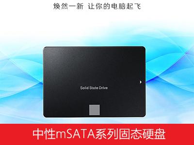 中性mSATA系列固态硬盘